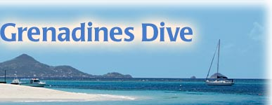 Grenadines Dive